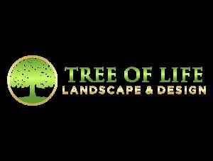 tree of life 1 transparant