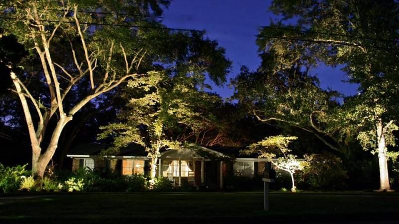 Landscape lighting Tree of Life