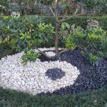 Garden and landscaping design and installation by Tree Of Life