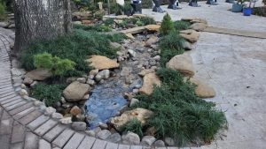 Water feature design and construction